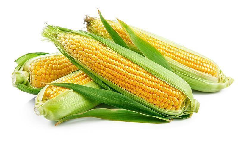 kolby kukurydziane
